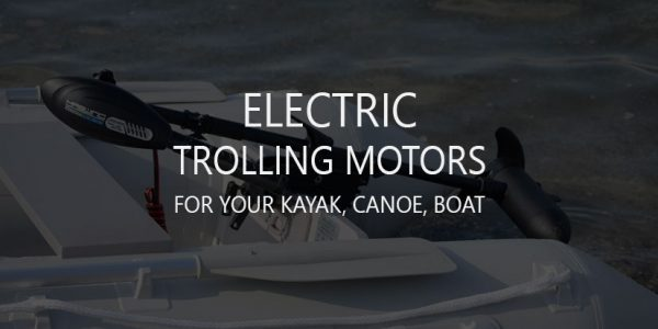 6 Best Electric Transom Mount Trolling Motors/Engines